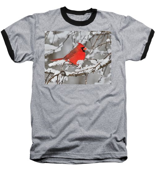 Baseball T-Shirt featuring the photograph Anticipation by Tony Beck