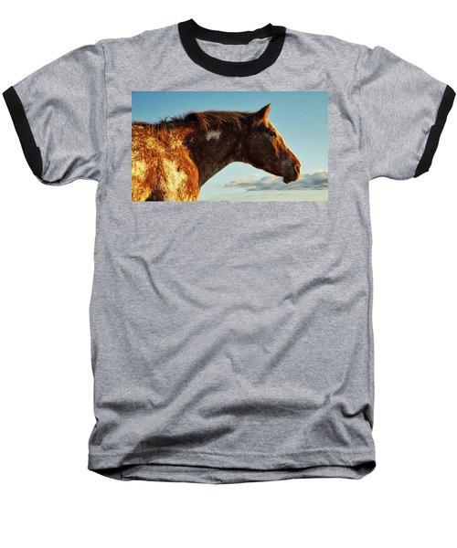 Appaloosa Mare Baseball T-Shirt
