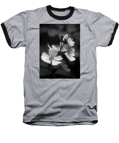 Apple Blossom 2 Baseball T-Shirt