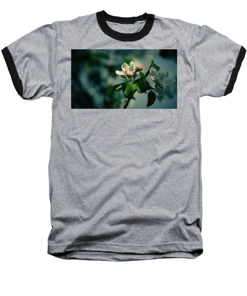 Apple Blossom Baseball T-Shirt