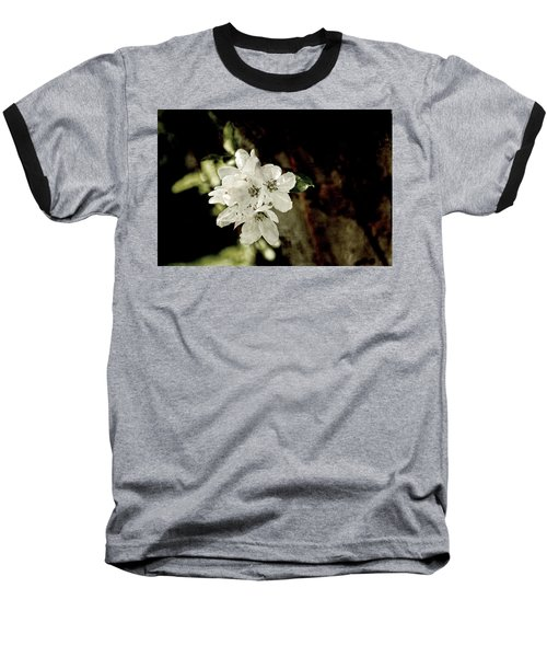 Apple Blossom Paper Baseball T-Shirt