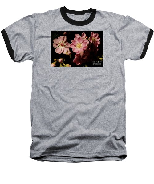 Apple Blossoms IIi Baseball T-Shirt