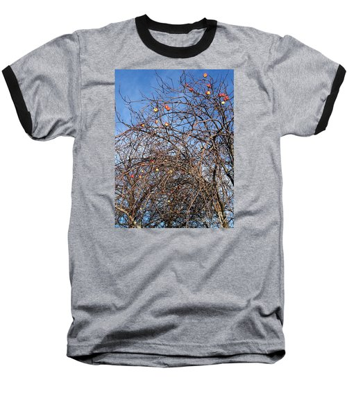 Apples In December Baseball T-Shirt by Patricia E Sundik