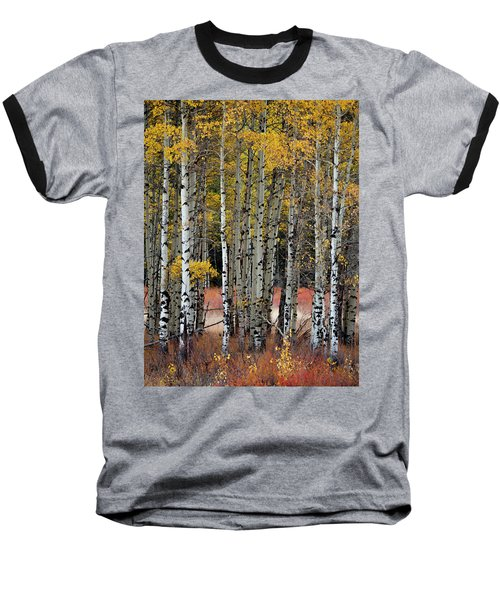 Appreciation Baseball T-Shirt