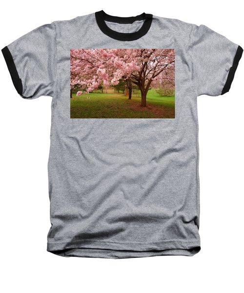Approach Me - Holmdel Park Baseball T-Shirt