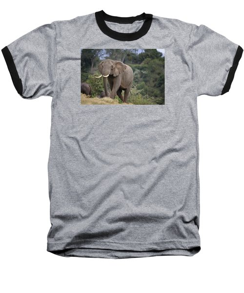Baseball T-Shirt featuring the photograph Approaching The Waterhole by Gary Hall