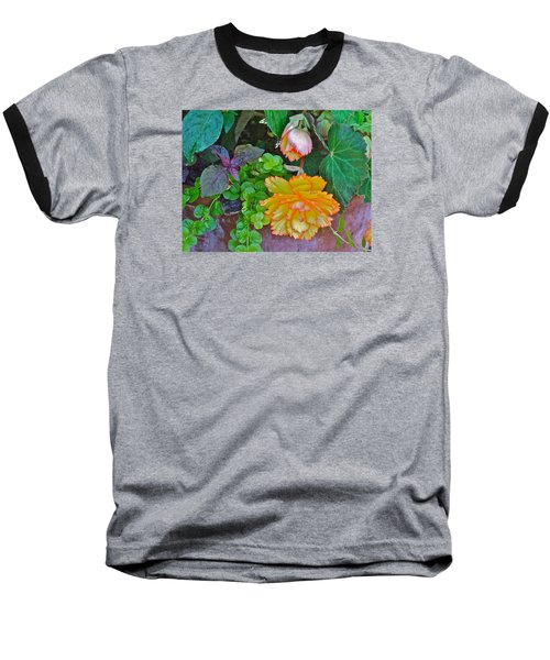 Apricot Begonia 3 Baseball T-Shirt by Janis Nussbaum Senungetuk