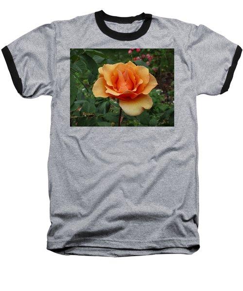 Apricot Rose Baseball T-Shirt