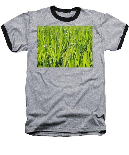 April Dewdrop Fairylights Baseball T-Shirt