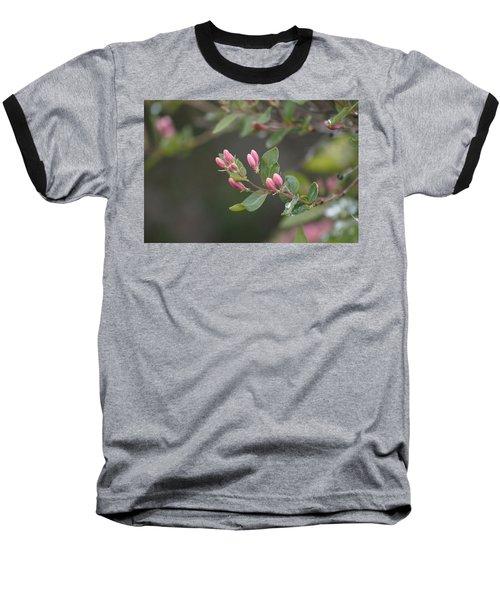 April Showers 3 Baseball T-Shirt by Antonio Romero