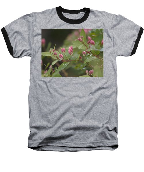April Showers 4 Baseball T-Shirt by Antonio Romero