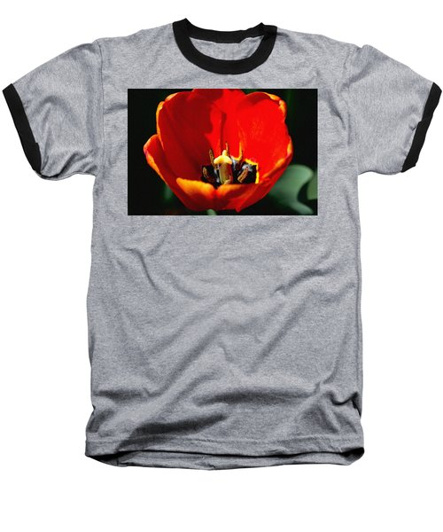April Tulips Baseball T-Shirt