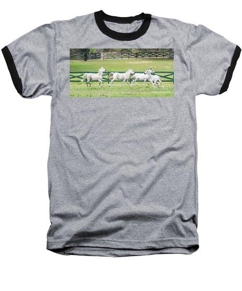 Arabian Horses Baseball T-Shirt