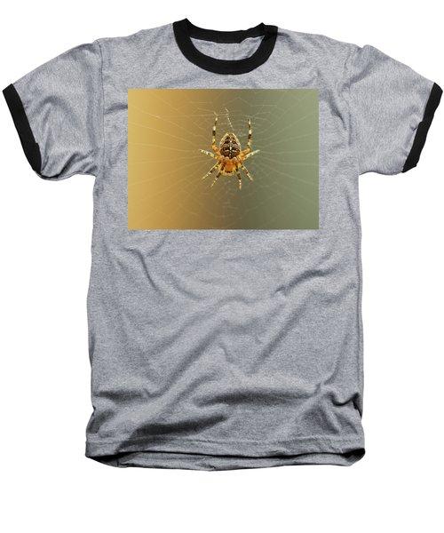 Araneus Diadematus Baseball T-Shirt