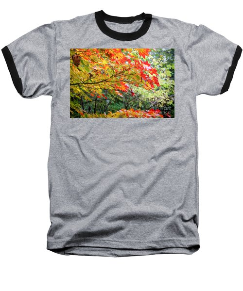 Arboretum Autumn Leaves Baseball T-Shirt