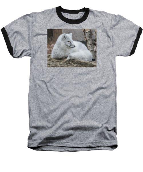 Arctic Fox Profile Baseball T-Shirt
