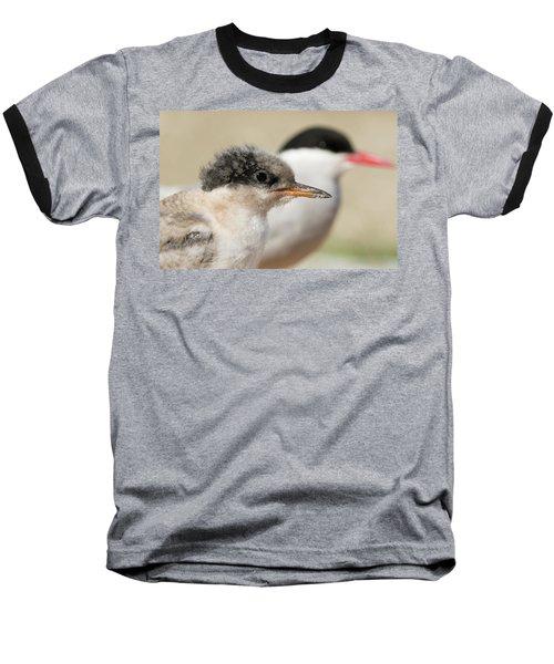 Arctic Tern Chick With Parent - Scotland Baseball T-Shirt