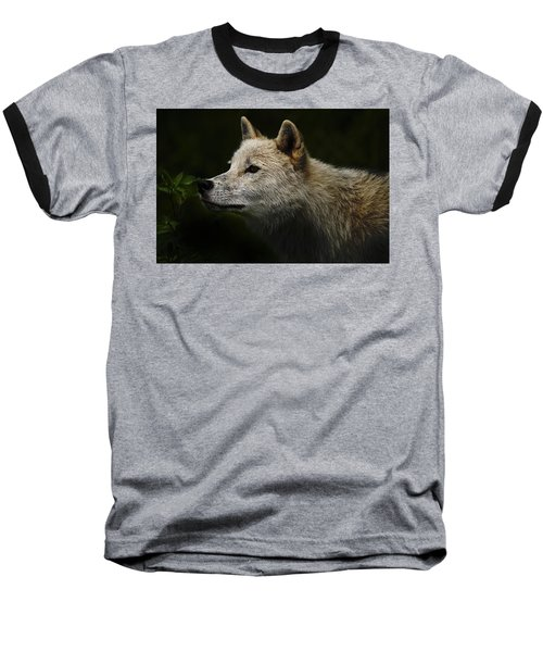 Baseball T-Shirt featuring the photograph Arctic Wolf Portrait by Michael Cummings