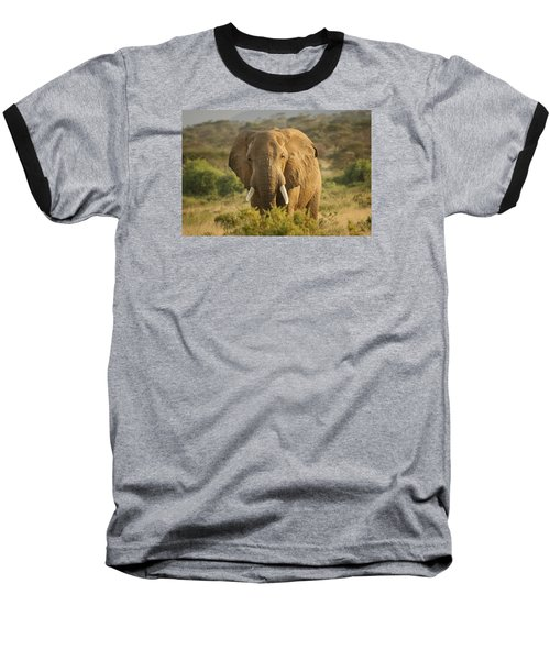 Are You Looking At Me? Baseball T-Shirt by Gary Hall