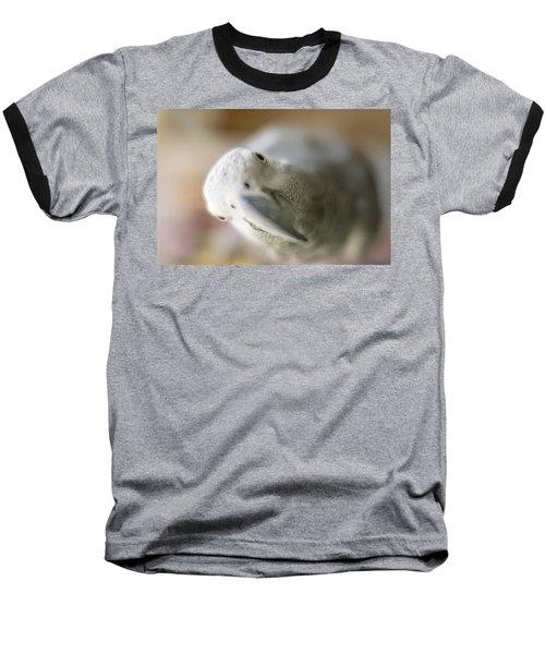 Are You Looking At Me Baseball T-Shirt