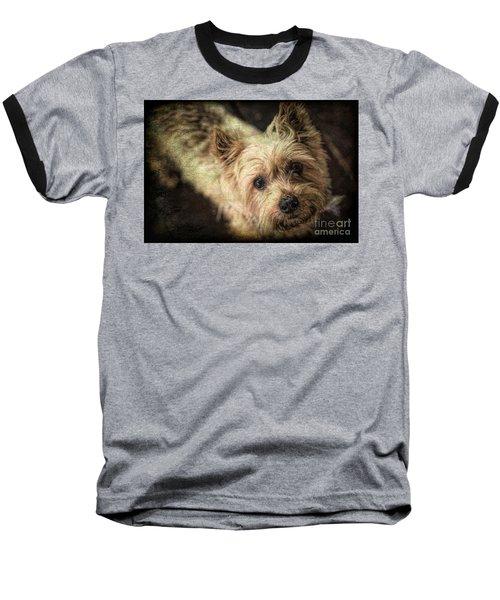 Arigato Baseball T-Shirt by Lynn Sprowl