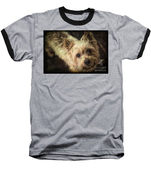 Arigato Baseball T-Shirt