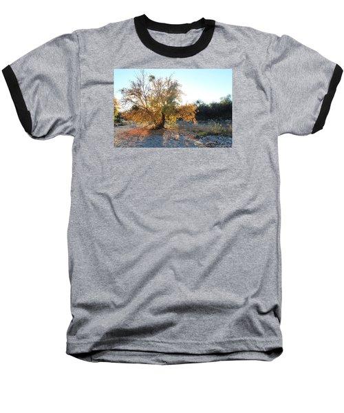 Arizona Birds' Nests Baseball T-Shirt