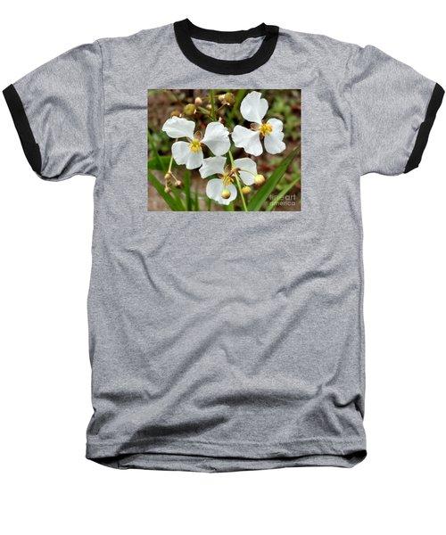 Arrowhead 3 Baseball T-Shirt