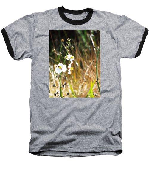 Arrowhead Blooms Baseball T-Shirt