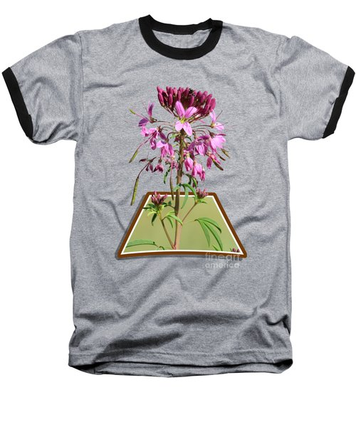 Rocky Mountain Bee Plant Baseball T-Shirt