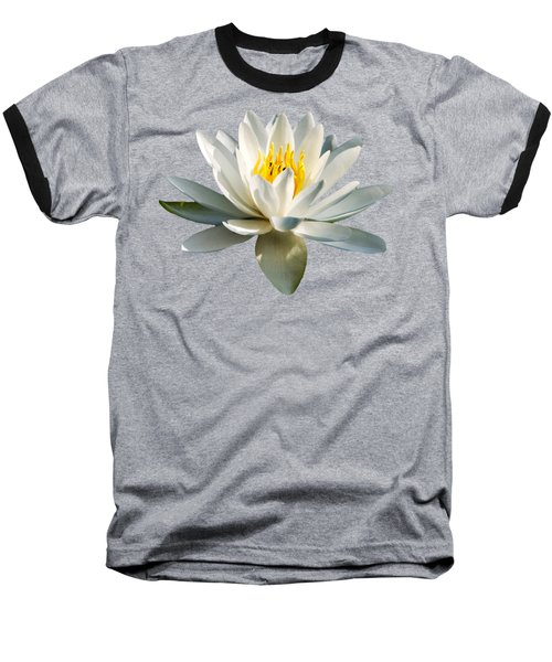 White Water Lily Baseball T-Shirt by Christina Rollo
