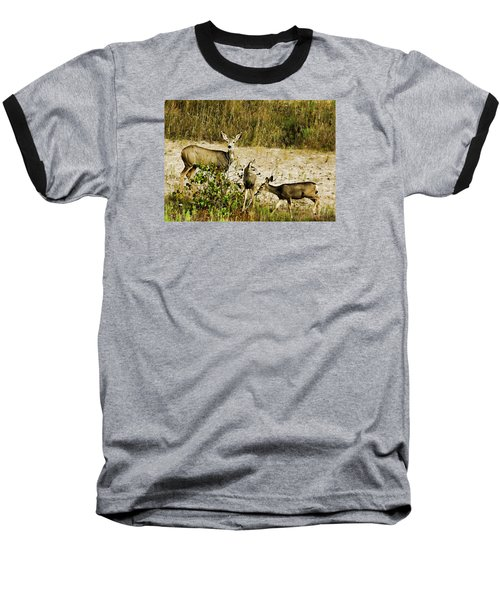 Mule Doe And Her Twins Baseball T-Shirt by Bill Kesler