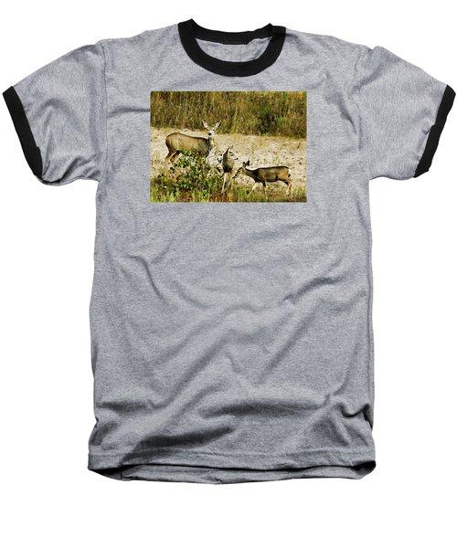 Mule Doe And Her Twins Baseball T-Shirt