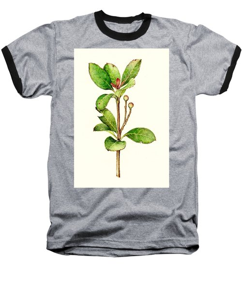 Baseball T-Shirt featuring the painting As The Twig Is Bent The Tree Inclines. by Heidi Kriel