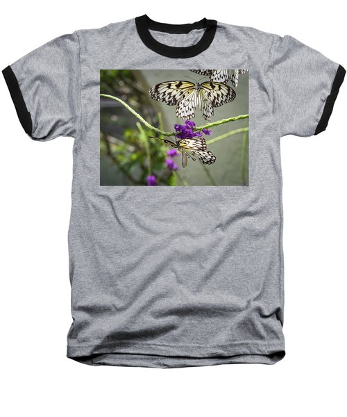 Ascension Baseball T-Shirt