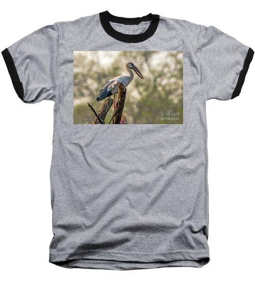 Asian Openbill Baseball T-Shirt