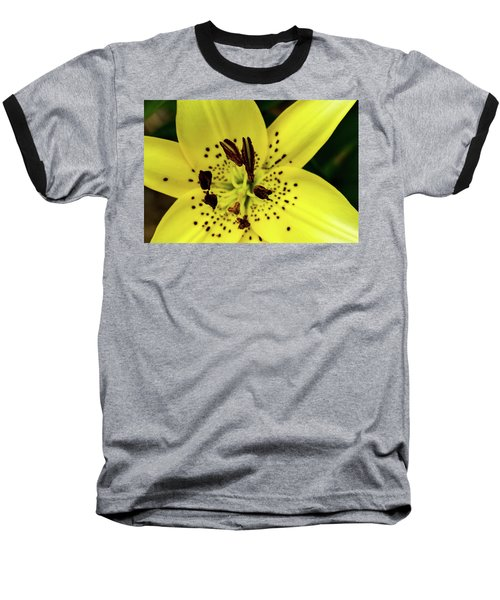 Asiatic Lily Baseball T-Shirt