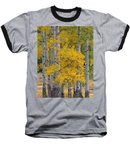 Aspen Bouquet Baseball T-Shirt