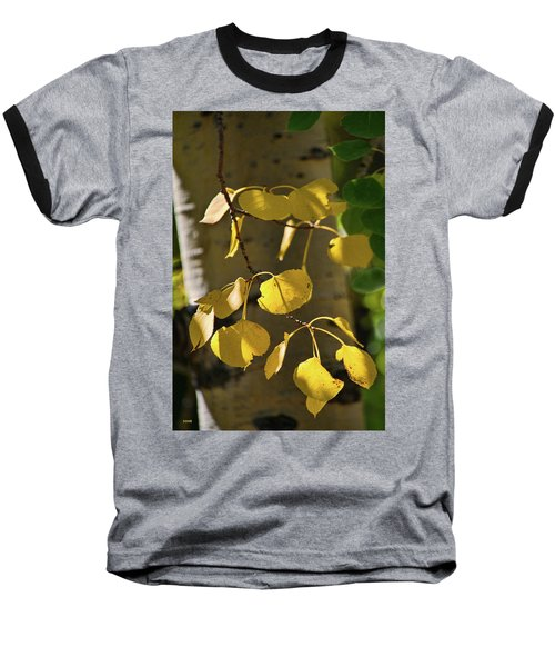 Aspen Closeup Baseball T-Shirt