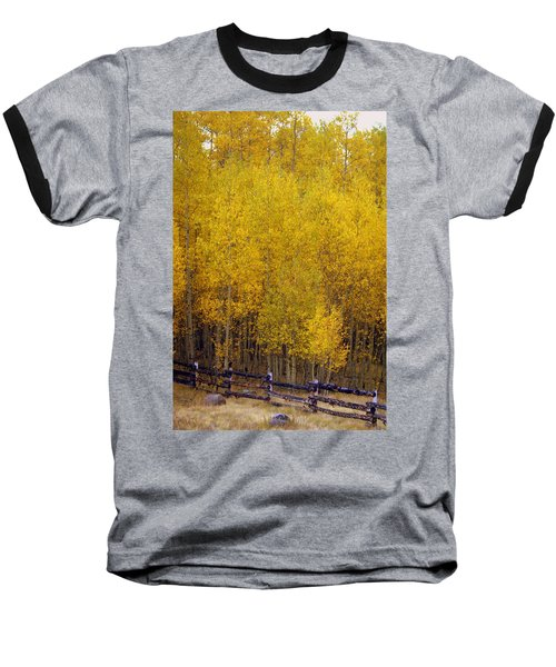 Aspen Fall 2 Baseball T-Shirt
