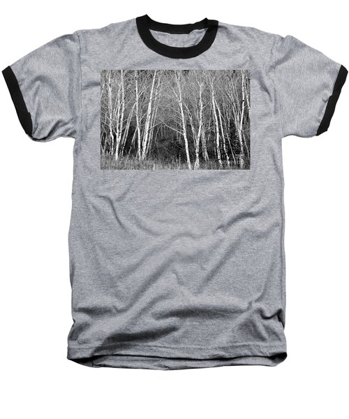 Aspen Forest Black And White Print Baseball T-Shirt