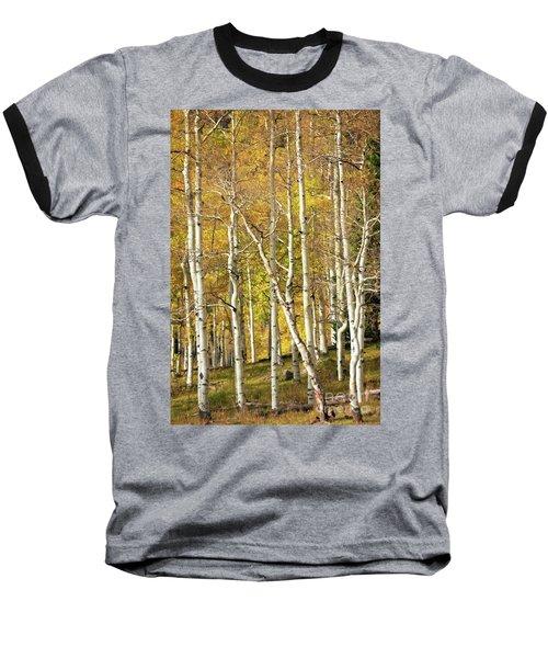 Aspen Forest Baseball T-Shirt