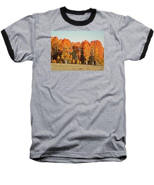 Aspen Forest In Autumn Baseball T-Shirt by Deborah Moen