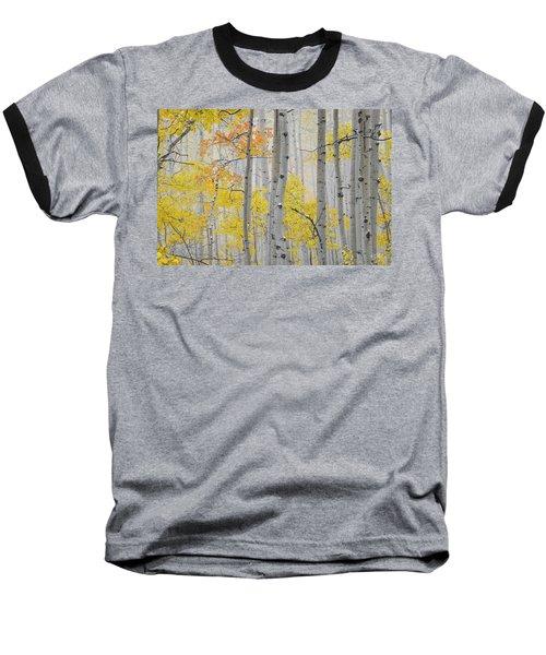 Aspen Forest Texture Baseball T-Shirt