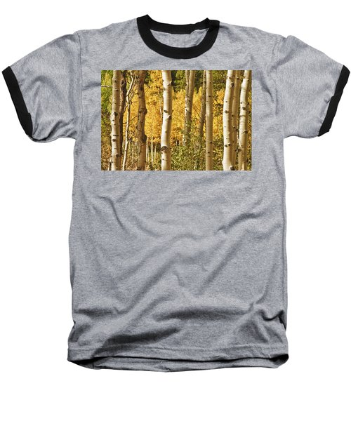 Aspen Gold Baseball T-Shirt