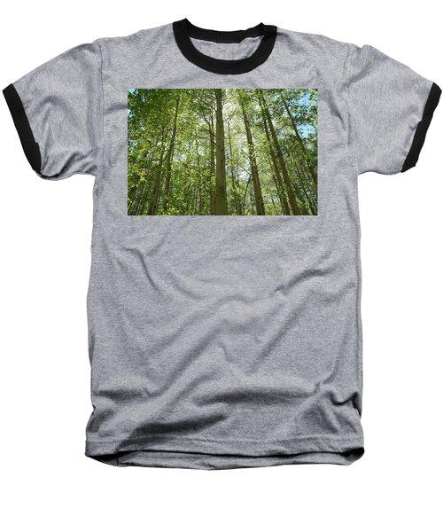 Aspen Green Baseball T-Shirt by Eric Glaser