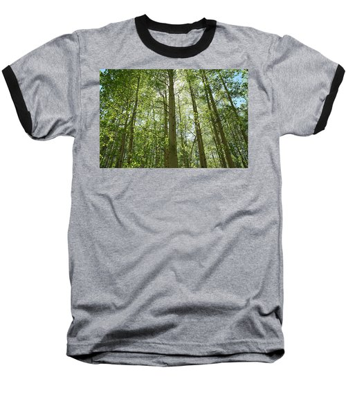 Aspen Green Baseball T-Shirt