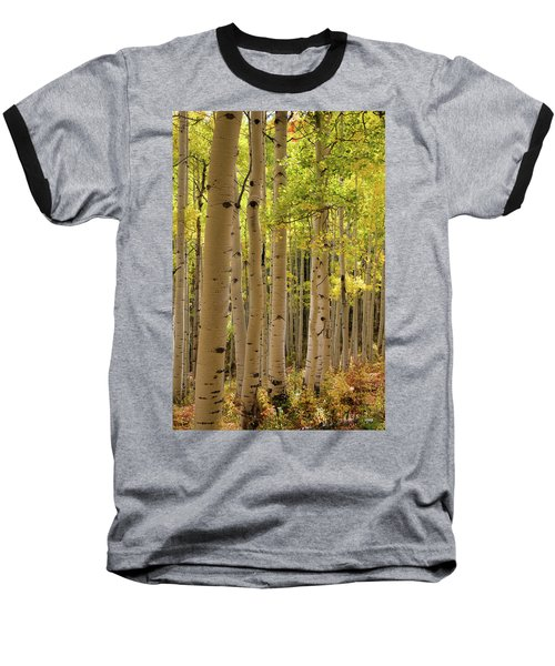 Aspen Grove Baseball T-Shirt
