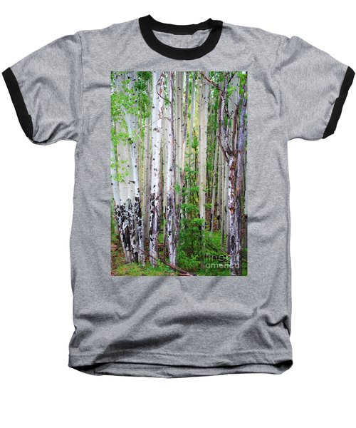 Aspen Grove In The White Mountains Baseball T-Shirt