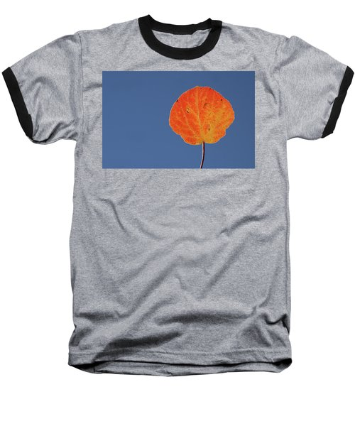 Baseball T-Shirt featuring the photograph Aspen Leaf 1 by Marie Leslie